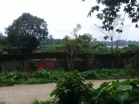 1 5 Hectares Vacant Lot For Sale In Bulacan 15000 M